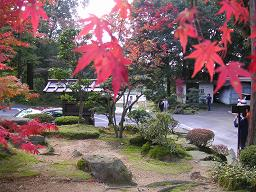 kyoto_saimyouji 013.jpg